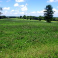 MLS#16052280      $35,900    SOLD!!! GORGEOUS BUILDING LOT IN THE HEART OF FARM COUNTRY IN LINCOLN COUNTY!  Here is the perfect spot to build that home in the country […]