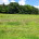 MLS#16058114   $30,000 SOLD!!! GET READY TO BUILD ON THIS ONE ACRE LOT IN UPSCALE ESTABLISHED NEIGHBORHOOD with blacktop streets, streetlights and restrictions to protect your investment. This lovely […]
