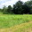 MLS#16058271   $30,000 GET READY TO BUILD ON THIS ONE ACRE LOT IN UPSCALE ESTABLISHED NEIGHBORHOOD with blacktop streets, streetlights and restrictions to protect your investment. This open and […]