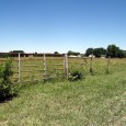 MLS# 17051892             $32,890     SOLD!!   5.06 ACRES OF COUNTRY LIVING MINUTES FROM TOWN!  Gorgeous fenced level lot makes great use for pasture unless you […]