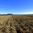 REAL ESTATE FARM AUCTION –  118.95 ACRES M/L IN LINCOLN COUNTY TO BE SOLD SATURDAY, JANUARY 27th, 2018, Beginning 11:00 A.M.  LOCATION:  157 Duckett Road, Silex, MO 63377 OPEN HOUSE ON REAL ESTATE – […]