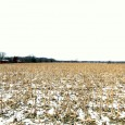 ABSOLUTE REAL ESTATE FARM AUCTION – HOME, OUTBUILDINGS AND     83 ACRES m/lTO BE SOLD SATURDAY, FEBRUARY 10, 2018, Beginning 11:00 A.M. LOCATION:1733 Leitman Rd., Moscow Mills, […]